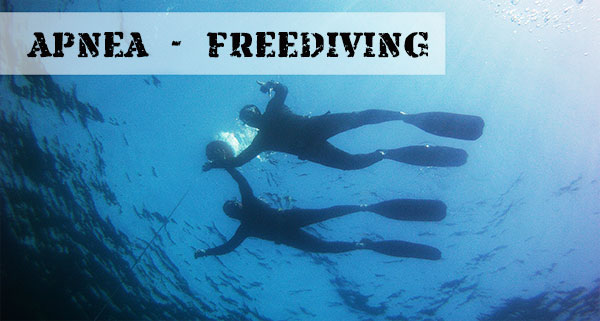 Curso de Apena, Freediving