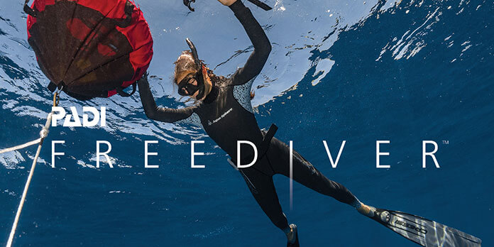 Curso-Basic-FreeDiver-1