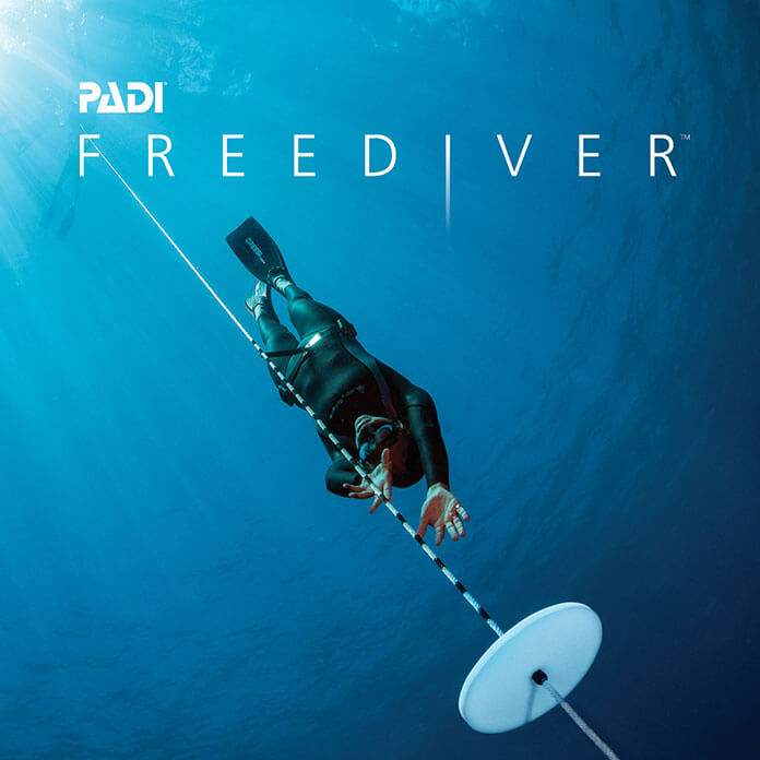 Curso PADI Basic FreeDiver