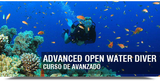 curso de buceo advanced open water diver PADI